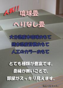 top_ryukyu
