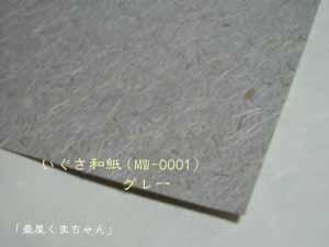 washi004